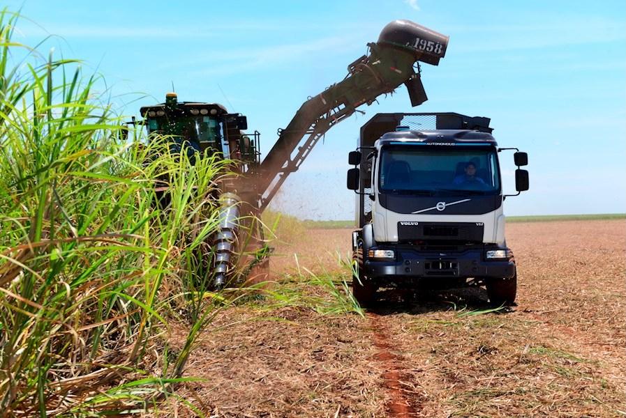 Volvo-Lkw für brasilianische Zuckerrohrbauern